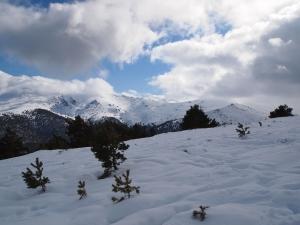 Un día de Febrero del 2011 en la Sierra de Madrid