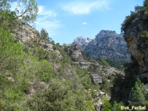 Cazorla ruta río Borosa 05_04_09 (28) [1600x1200]