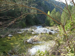 Cazorla ruta río Borosa 05_04_09 (36) [1600x1200]