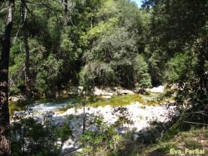 Cazorla ruta río Borosa 05_04_09 (5) [1600x1200]