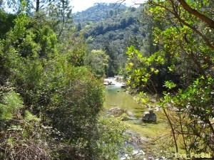 Cazorla ruta río Borosa 05_04_09 (8) [1600x1200]