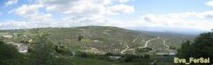 Jaén [1600x1200]