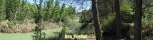 río Jucar2 [1600x1200]