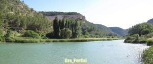 río Jucar3 [1600x1200]