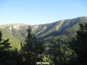 Valle de Ordesa (1) [1600x1200]