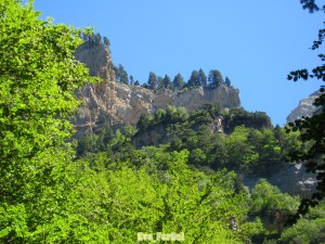 Valle de Ordesa (12) [1600x1200]