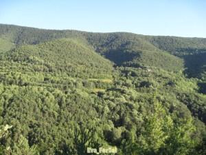 Valle de Ordesa [1600x1200]
