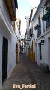 Cordoba_V (11)