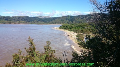 Parque Nacional Abel Tasman, el paraiso de selvas y playas imposibles entre el espacio entre los árboles y la línea de marea